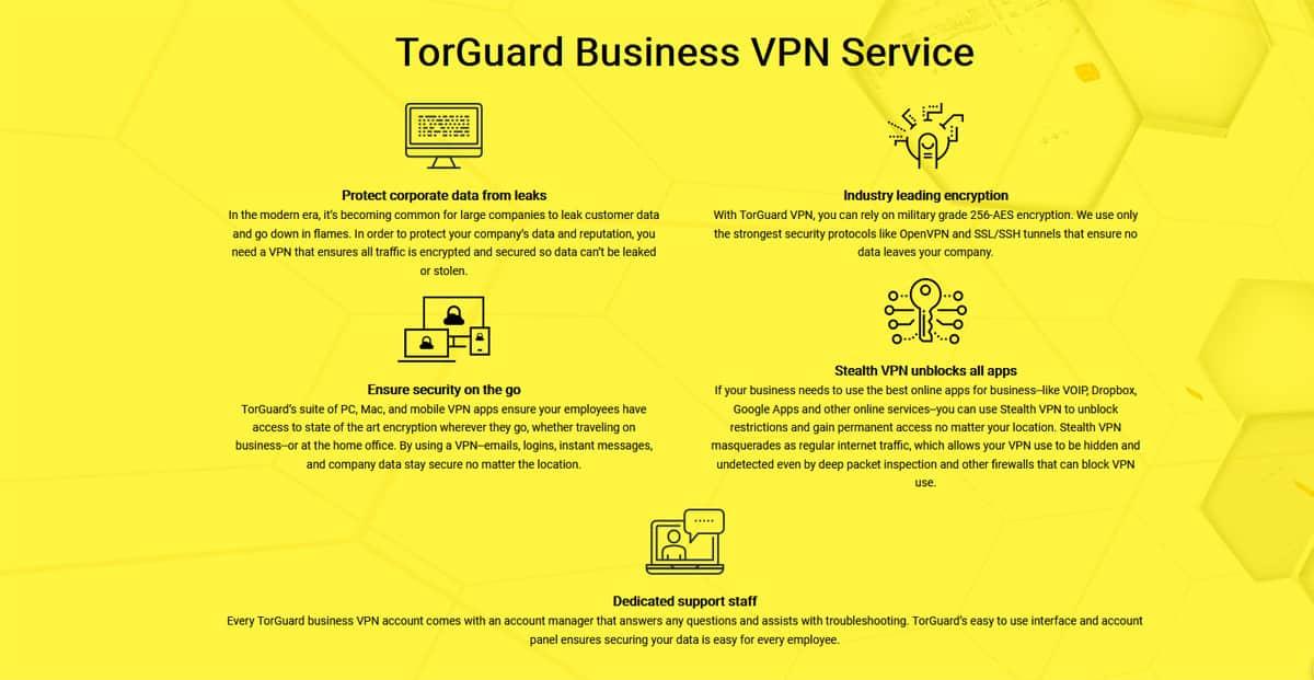 TorGuard Business VPN Service