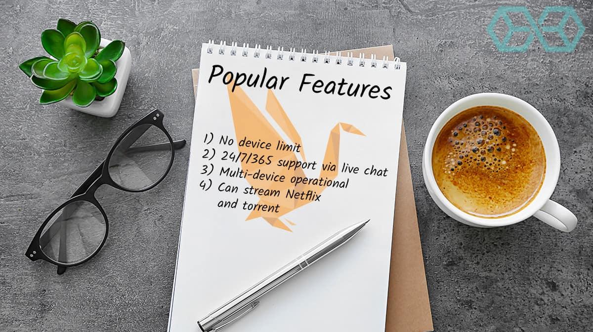 Popular Features of Goose VPN