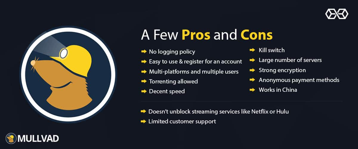 A Few Pros and Cons Mullvad VPN - Source: Shutterstock.com
